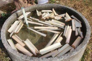 Cara memelihara ikan lele di kolam semen  Mudah dibesarkan dan tumbuh dengan cepat